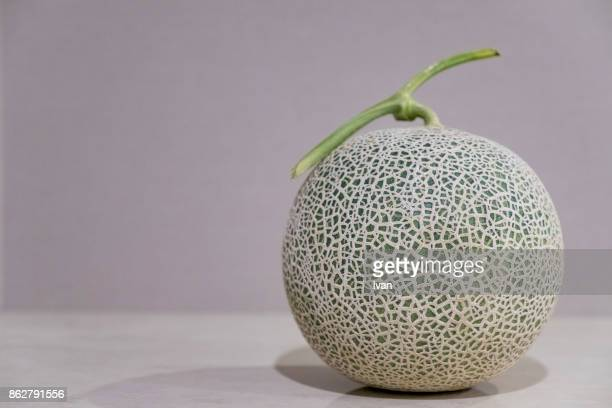 whole cantaloupe melon - muskmelon stock pictures, royalty-free photos & images