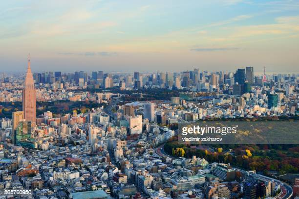 whole central tokyo cityscape view - yoyogi tokyo stock photos and pictures