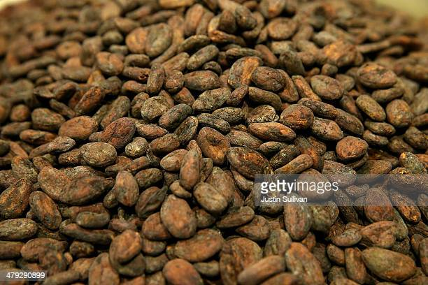 Whole cocoa beans sit in a bean room at Dandelion Chocolate on March 17, 2014 in San Francisco, California. A new study sponsored by the National...