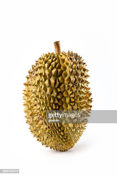Whole durian (Durio zibethinus)