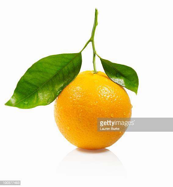 Whole Orange with Leaves on White Background