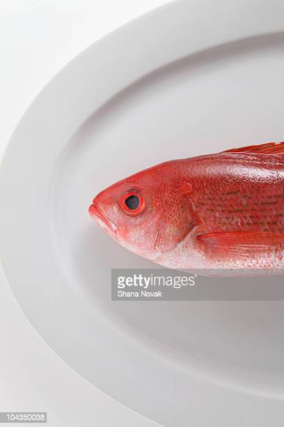 Whole Red Snapper on a Plate