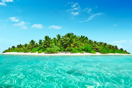 Whole tropical island within atoll in tropical Ocean. 520657356