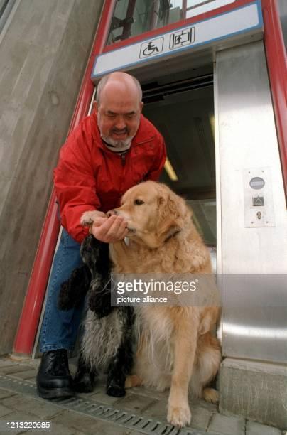 """Während eines Benimm-Kurses für Hunde belohnt am 27.4.1998 Tierarzt und Tiertherapeut Wolf-Dieter Schmidt seinen Golden Retriever """"Aysha"""" und Cocker..."""