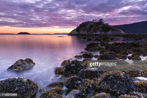 whytecliff park sunset in winter, west vancouver, bc, canada - pacific ocean stock pictures, royalty-free photos & images