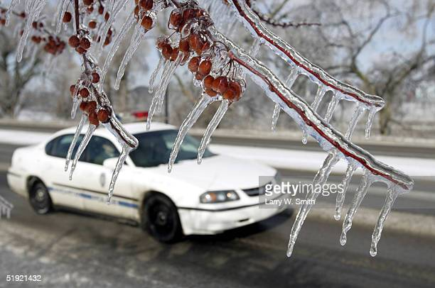 Wichita City police car passes by frozen tree branches January 6, 2005 in Wichita, Kansas. An ice storm left about 52,000 Westar Energy residents, of...