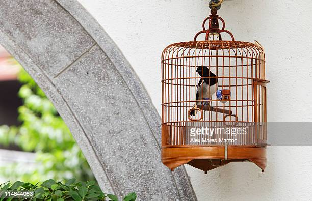 Wicker bird cage hanging on wall