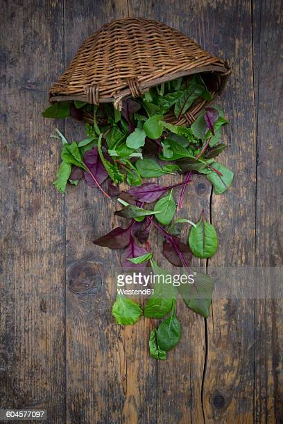 Wickerbasket and different organic lettuce leaves on dark wood