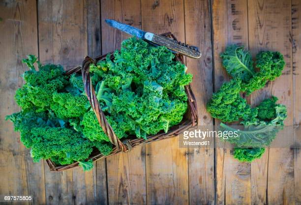 wickerbasket of kale leaves and pocket knife on wood - kale stock photos and pictures