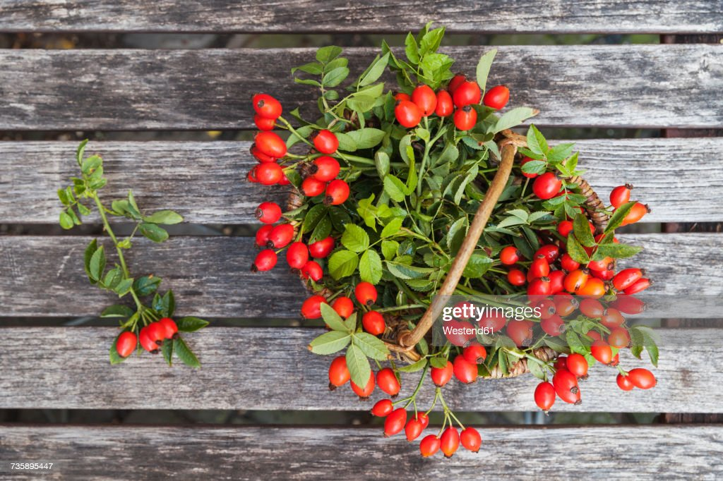 Wickerbasket of rosehips on wood : Stock Photo