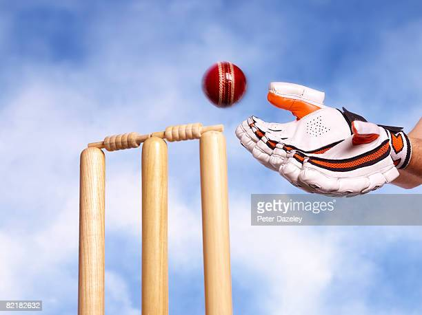 wicket keeper catching cricket ball - wicket stock pictures, royalty-free photos & images