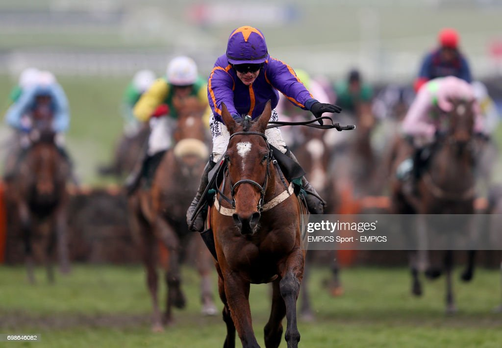 Horse Racing - 2015 Cheltenham Festival - Gold Cup Day - Cheltenham Racecourse : News Photo