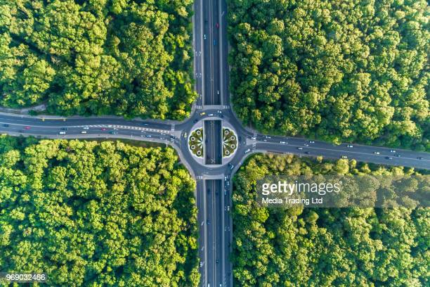 wide aerial view looking down on traffic circle in the middle of a beautiful forest - intersection stock pictures, royalty-free photos & images