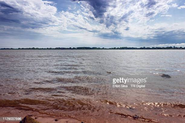 Wide and extensive river and its archipelagos in the skyline with brown water