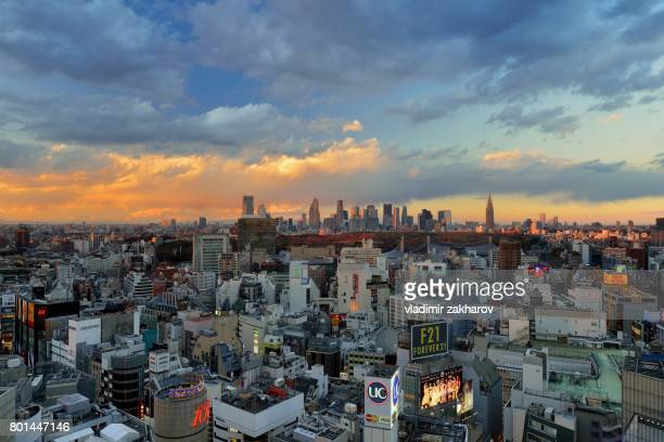 wide angle elevated view of tokyo at sunset - yoyogi tokyo stock photos and pictures