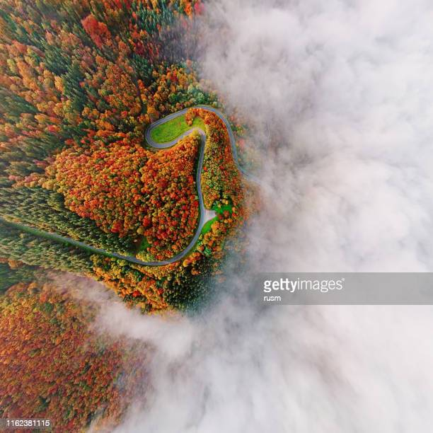 wide angle overhead aerial view of autumn forest road in morning fog. moselle valley, germany. - moselle imagens e fotografias de stock