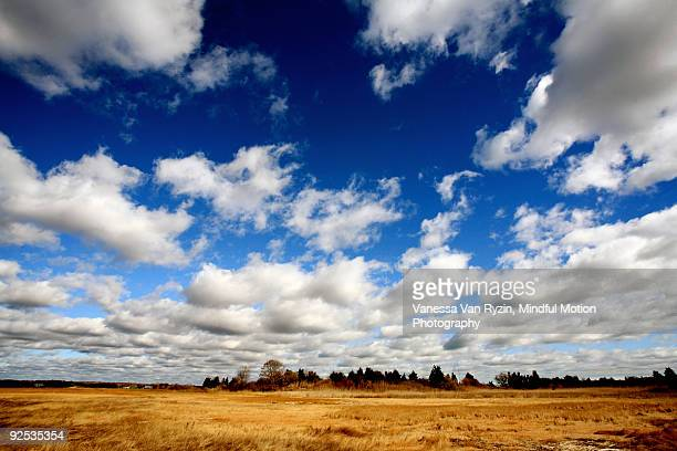 wide angle sky and clouds - vanessa van ryzin stockfoto's en -beelden