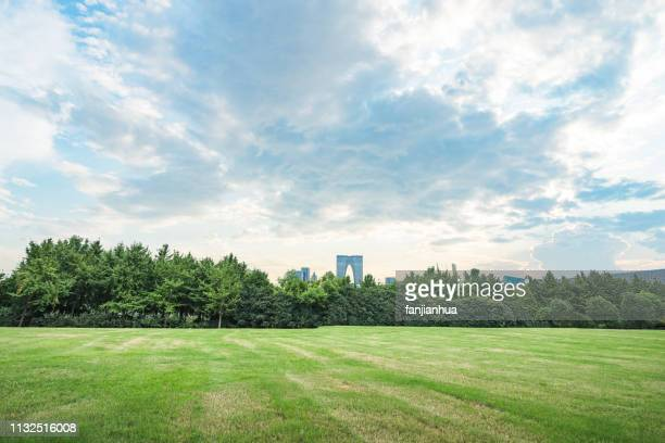 wide green field against sky - wide stock pictures, royalty-free photos & images