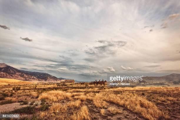 乗馬ライダーと広い風景 - 家畜柵 ストックフォトと画像