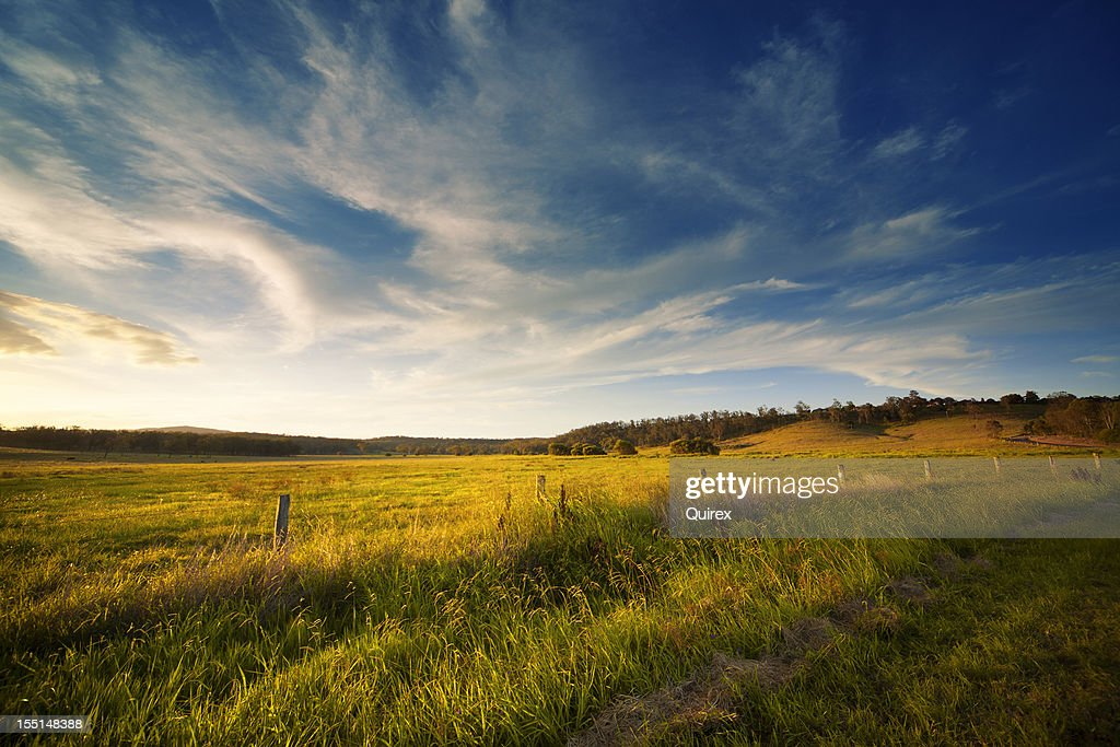Wide Open Field : Stock Photo