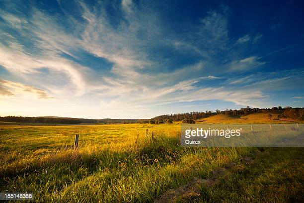 wide open field - horizontal stock pictures, royalty-free photos & images
