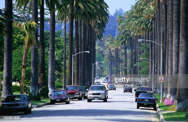 Wide, palm-lined streets of Beverly Hills.