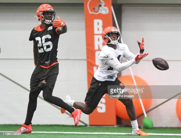 Wide receiver Antonio Callaway of the Cleveland Browns drops a pass against cornerback Greedy Williams during a mandatory mini camp practice on June...