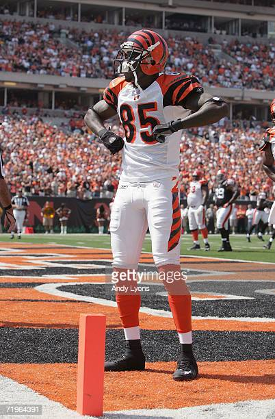 Wide receiver Chad Johnson of the Cincinnati Bengals celebrates after scoring a touchdown against the Cleveland Browns on September 17 2006 during...