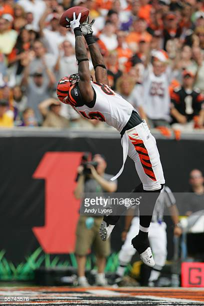 Wide Receiver Chad Johnson of the Cincinnati Bengals leaps in the air to make a catch for a touchdown against the Minnesota Vikings during the NFL...