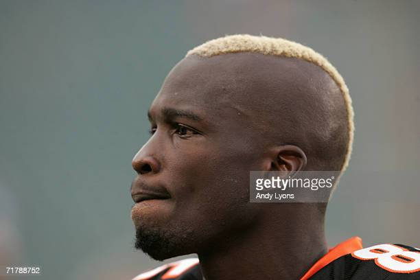 Wide receiver Chad Johnson of the Cincinnati Bengals looks on during warm-ups prior to a pre-season game against the Green Bay Packers at Paul Brown...