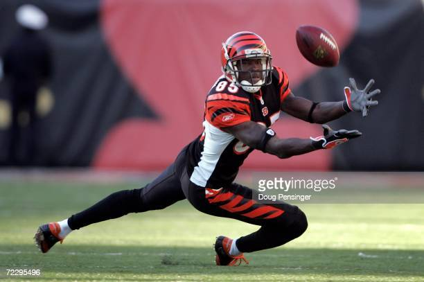 Wide receiver Chad Johnson of the Cincinnati Bengals makes a 20 yard reception in the fourth quarter that was challenged by the Atlanta Falcons and...