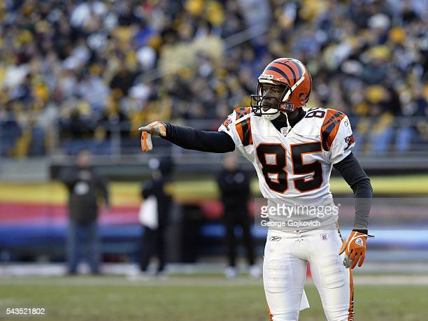 Wide receiver Chad Johnson of the Cincinnati Bengals points to the sideline during a National Football League game against the Pittsburgh Steelers at...