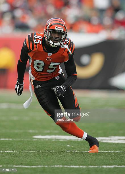 Wide receiver Chad Johnson of the Cincinnati Bengals runs on the field during the game against the Cleveland Browns at Paul Brown Stadium on November...