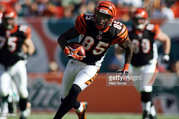 Wide receiver Chad Johnson of the Cincinnati Bengals scores on a touchdown catch against the Miami Dolphins in the first half on December 30 2007 at...