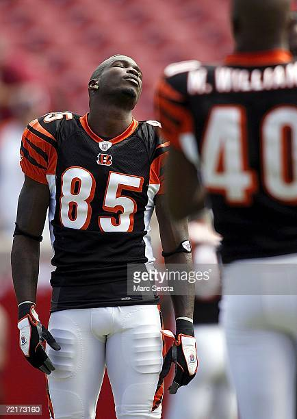 Wide receiver Chad Johnson of the Cincinnati Bengals stretches with teammate Madieu Williams prior to their game against the Tampa Bay Buccaneers on...