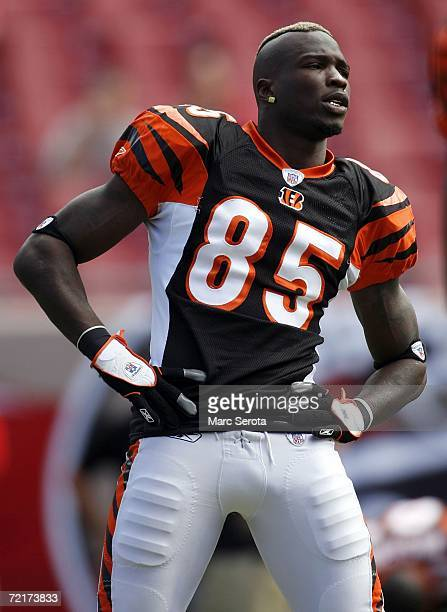 Wide receiver Chad Johnson of the Cinncinatti Bengals stretches prior to a game against the Tampa Bay Buccaneers on October 15 2006 at Raymond James...