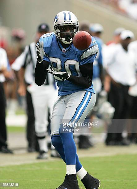 Wide receiver Charles Rogers of the Detroit Lions catches a pass in the fourth quarter against the Tampa Bay Buccaneers on October 2 2005 at Raymond...