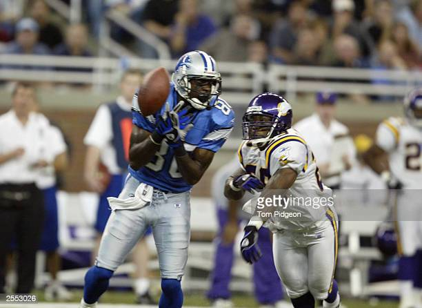 Wide receiver Charles Rogers of the Detroit Lions fails to catch a pass while being defended by linebacker Mike Nattiel of the Minnesota Vikings at...