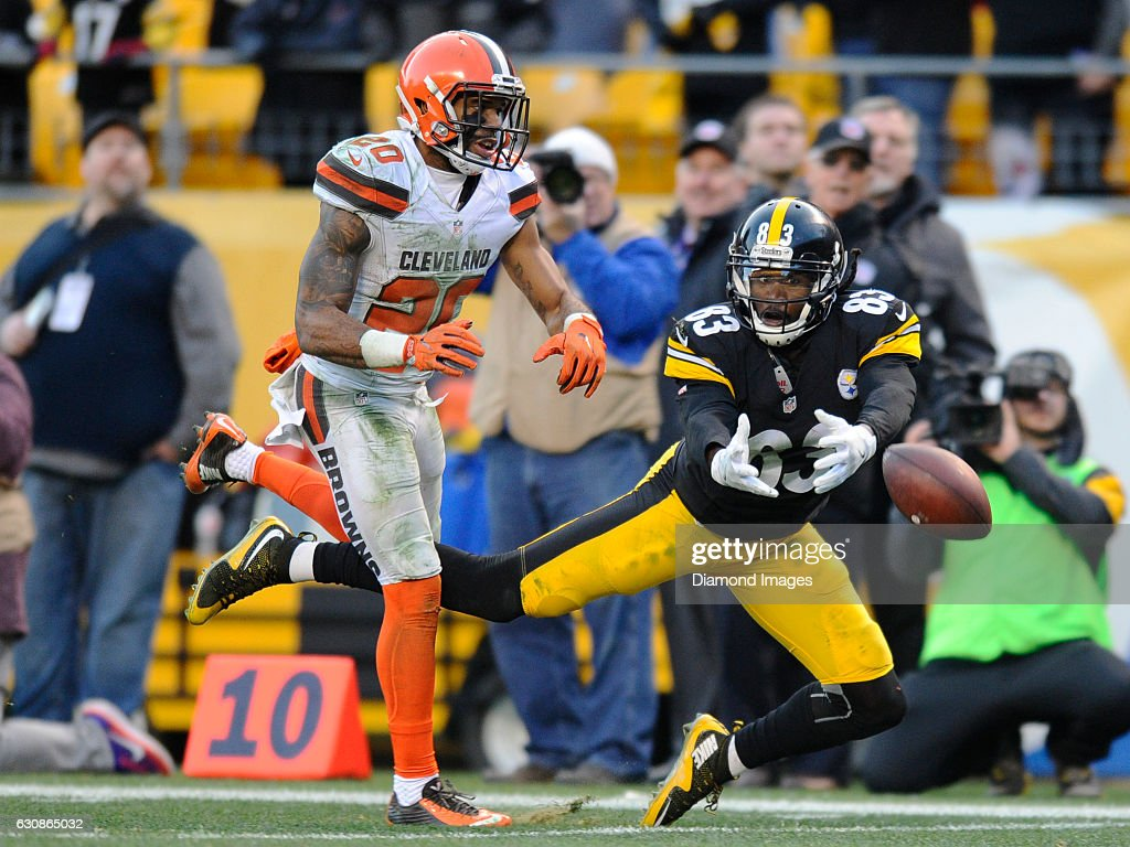 6c961c35b87 Wide receiver Cobi Hamilton of the Pittsburgh Steelers drops a pass ...