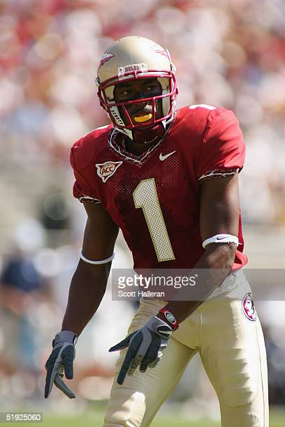 Wide receiver Craphonso Thorpe of the Florida State Seminoles looks on while facing the North Carolina Tar Heels at Doak Campbell Stadium on October...