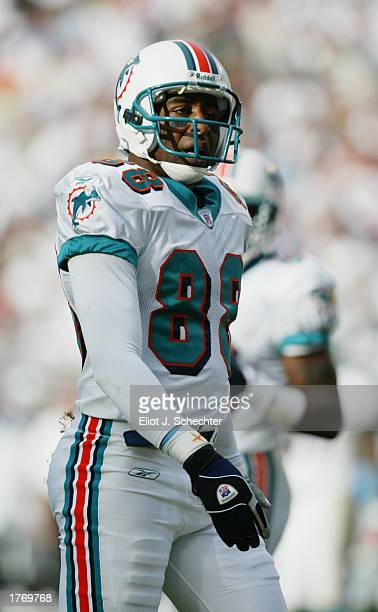 Wide Receiver Cris Carter of the Miami Dolphins in action during the NFL game against the Oakland Raiders at Pro Player Stadium on December 15, 2002...
