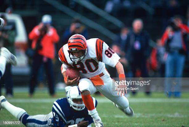 Wide Receiver Cris Collinsworth of the Cincinnati Bengals runs out of the tackle of Dwayne O'Steen of the Baltimore Colts during an NFL football game...