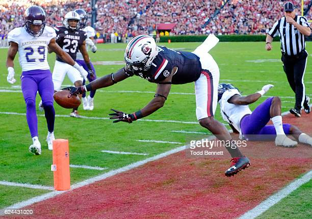 Wide receiver Deebo Samuel of the South Carolina Gamecocks is knocked out of bounds short of the endzone by linebacker AJ Newman of the Western...