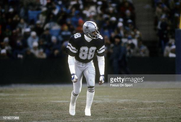 Wide Receiver Drew Pearson of the Dallas Cowboys in action against the Baltimore Colts December 6 1981 during an NFL football game at Memorial...
