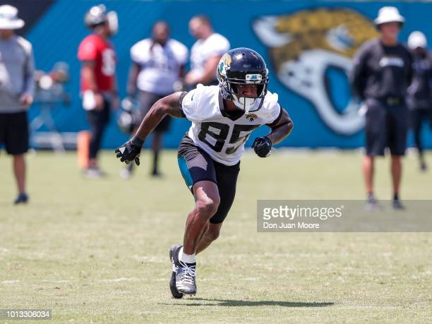 Wide Receiver Jaydon Mickens of the Jacksonville Jaguars works out during Training Camp at Dream Finders Homes Practice Complex on July 27 2018 in...