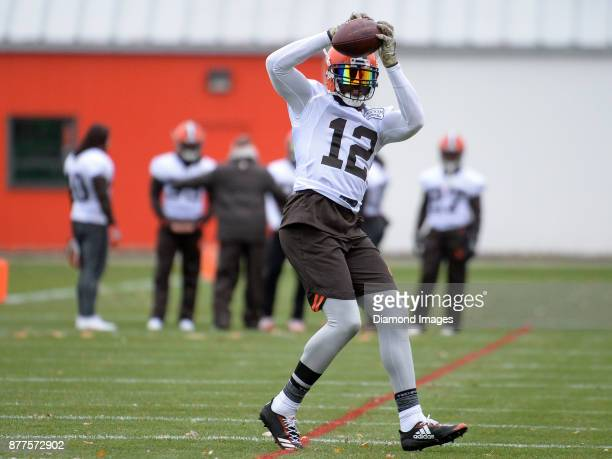 Wide receiver Josh Gordon of the Cleveland Browns catches a pass during a practice on November 22 2017 at the Cleveland Browns training complex in...