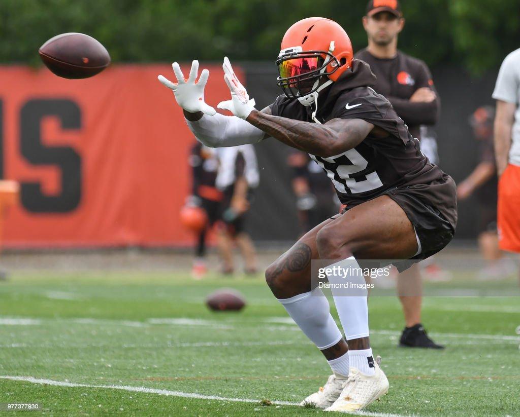 2018 Cleveland Browns Mini Camp : News Photo