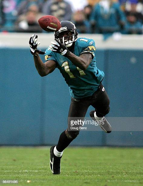 Wide receiver Reggie Williams of the Jacksonville Jaguars can't make a diving catch in the fourth quarter against the San Francisco 49ers on December...