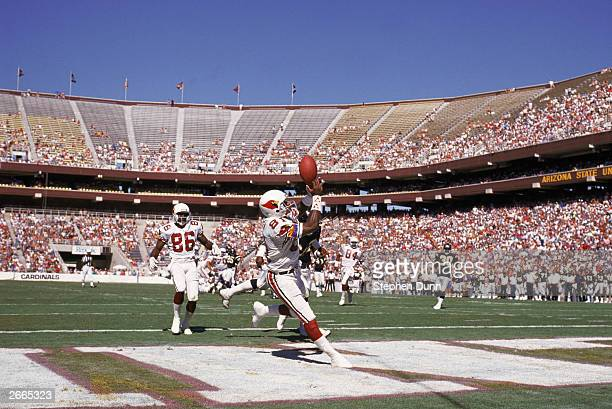 Wide receiver Roy Green of the Phoenix Cardinals catches a pass in the endzone during a NFL game against the San Diego Chargers on October 1 1989 at...