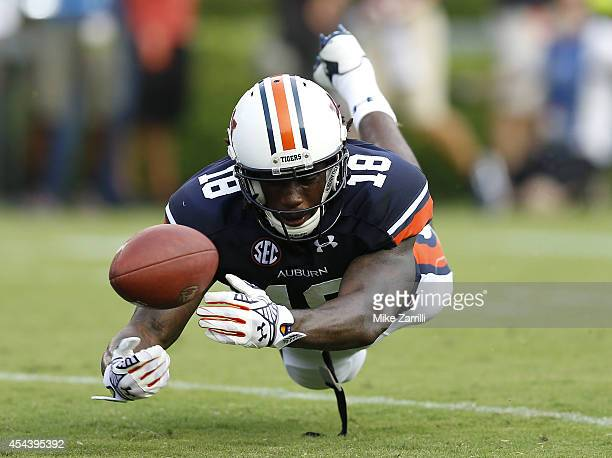 Wide receiver Sammy Coates of the Auburn Tigers dives and just misses making a reception in the end zone during the game against the Arkansas...